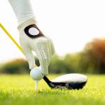 Evolution of Golf